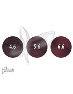 Vermelho Ion Color Brilliance | ion COLOR Brilliance