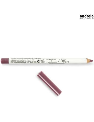 Lip Liner 01 Perfect Definition - Andreia Makeup Lábios Andreia Higicol