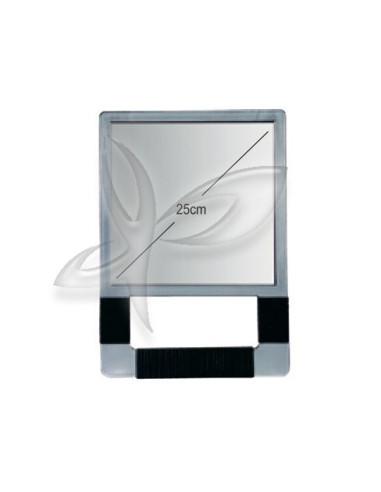Espelho para Salão de Cabeleireiro Rectangular Prata Espelhos de Mão